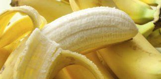 Top Banana Modified Bananas Fight Fungus Themselves