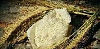 Grain Alliance