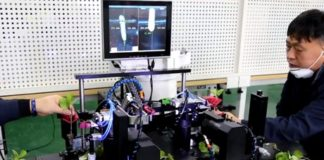 Robo Crop Vegetables Will Be Grafted By Korean Robots