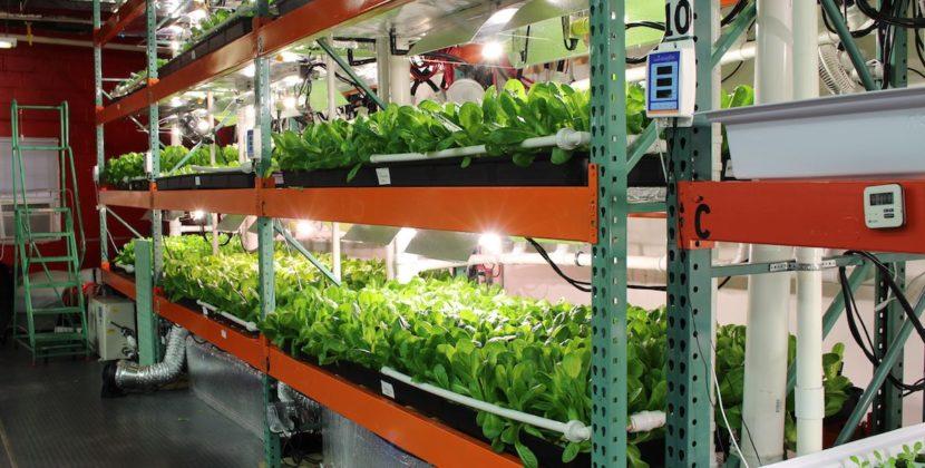 Metropolis Farms Vegan Philadelphia 2 830x420