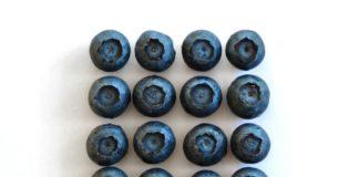 Blue Berries 2108547 1280 324x160