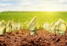 Dollars Growing From Ground Nomadsould1 Istock Thinkstock 510948629 218x150