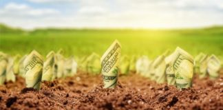 Dollars Growing From Ground Nomadsould1 Istock Thinkstock 510948629 324x160
