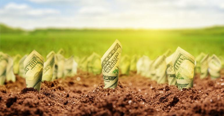 Dollars Growing From Ground Nomadsould1 Istock Thinkstock 510948629