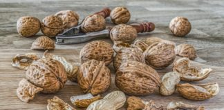 Nuts 2971675 1920 324x160
