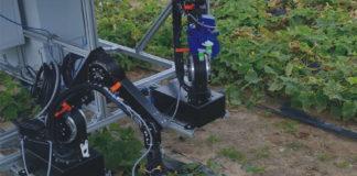 Cucumber Picking Robot 720x720 324x160