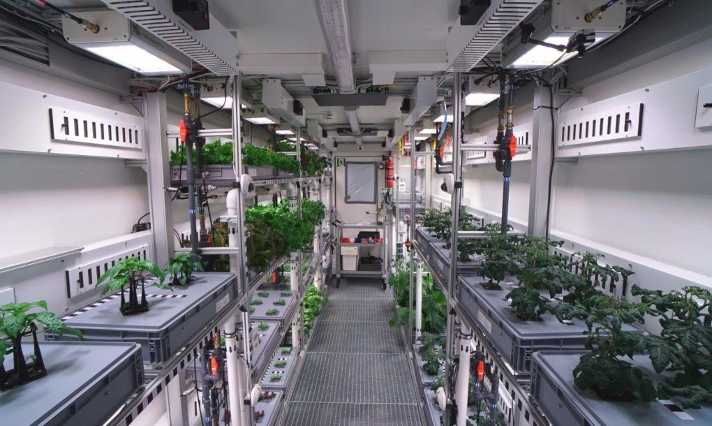Eden Iss Plants 1020x610
