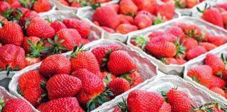 Strawberries 1350482 1920 324x160