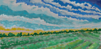 Berry Field 3 324x160