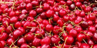 Cherries 1465801 1280 324x160