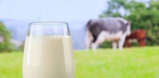 Milk 324x160