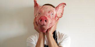 Pig0 324x160