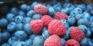 Wild Fruits 1535507 1280 324x160