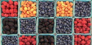 Berries 1841064 1280 324x160