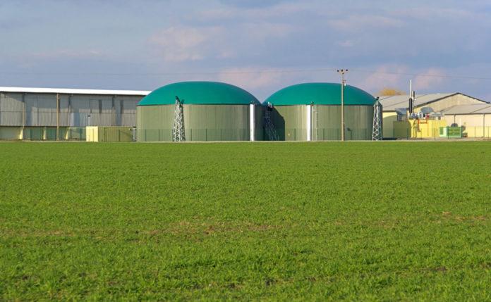 Biogas 1 1024x6311 696x429