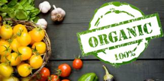 Organic 1 324x160