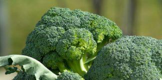 Vegetables 673181 1280 324x160