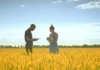 Videoblocks Young Man With Tablet Speaking About Wheat Harvest With Female Agronom Agriculture Research Agro Farmer Researchers In Golden Wheat Field Hnezttjdrg Thumbnail Full01 100x70