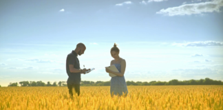 Videoblocks Young Man With Tablet Speaking About Wheat Harvest With Female Agronom Agriculture Research Agro Farmer Researchers In Golden Wheat Field Hnezttjdrg Thumbnail Full01 324x160