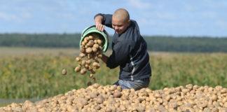 45696 Tysyacha Tonn Toksichnyh Himikatov Zhdet Utilizacii V Odesskoj Oblasti Big 8 324x160