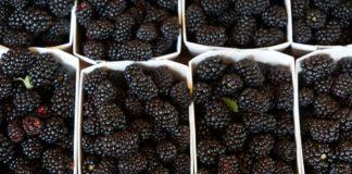 Blackberries 862803 1280 324x160