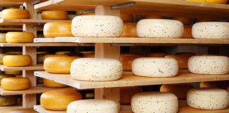 Cheese2015 0 324x160