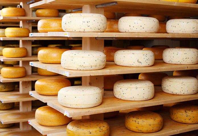 Cheese2015 0 696x479