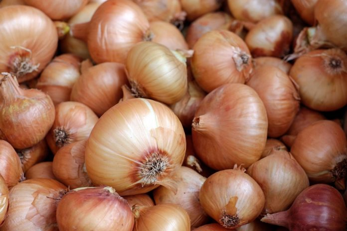 Just Tears Onion Prices Increased By 50 But Remain Lower Than Last Year 039 S