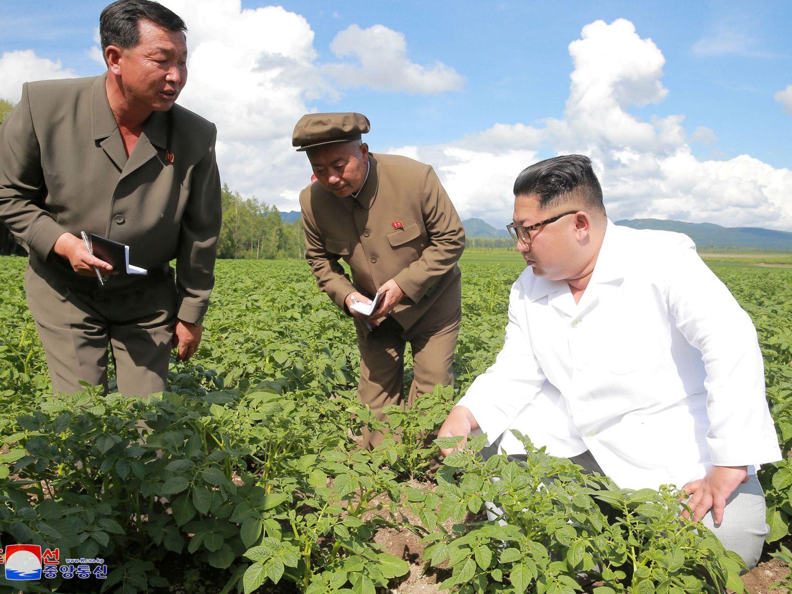 Skynews Kim Jong Un North Korea 4358472