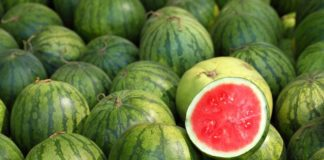 Barge Sir Kherson Watermelons Are Planned To Be Sold In Walmart