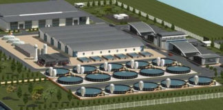 Non Conservative Solution The Mariupol Fish Canning Plant Will Become An Industrial Park