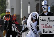 Bay Pay Bayer 8700