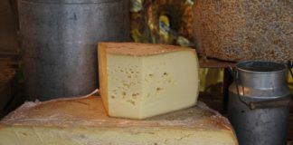 Cheese 1029190 1280 324x160