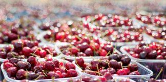 Cherries 1433525 1280 324x160