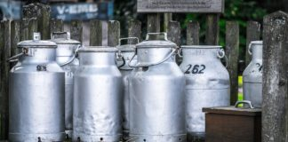 Milk Cans 1659157 1280 324x160