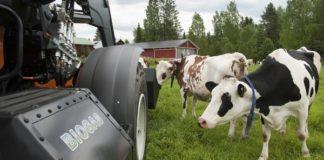 Obtenicion Biogas Definicion Tipos Producir Casero Planta Generador 324x160