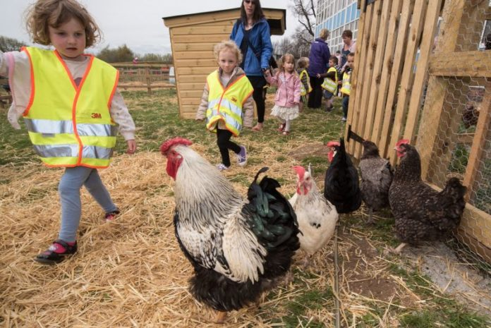Kids Agriculture In The Uk They Want To Twin Each Primary School With Farm