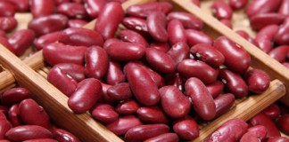 Precious Beans The Cost Price Of Beans Is 8 Thousand Uah But For Export They Are Sold 2 5 Times More Expensive