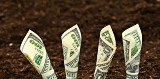 Money Soil 324x160