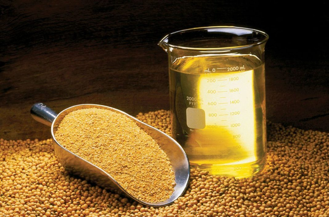 Palm Soybean Oil Markets Enjoyed Increases Last Week 1068x705