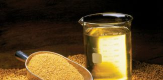 Palm Soybean Oil Markets Enjoyed Increases Last Week 324x160
