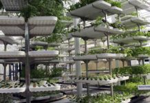 Vertical Farming 218x150