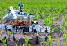 Robot Pole Zamenyat 0 218x150