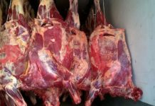 Filletphiles Eu Boosts Beef Exports With Domestic Production Falling And Deficit Rising