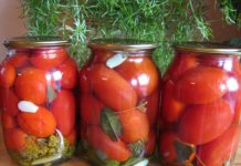 Zagotovka Pomidor 218x150
