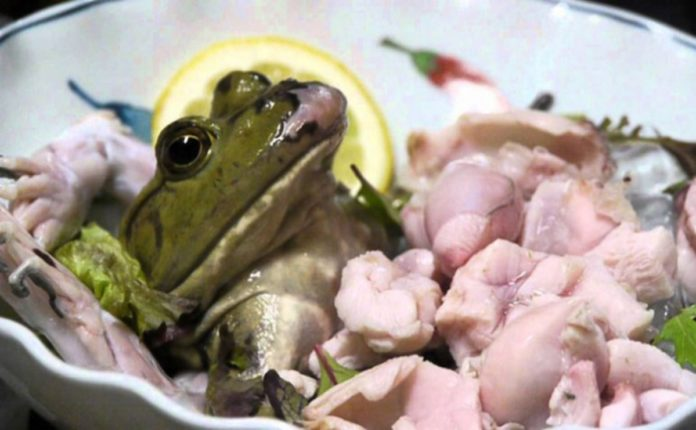 Frog Choker Ukraine Has Increased The Import Of Frog Meat By 8 Times