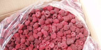 Frozen Off Ukraine Exported A Record Volume Of Frozen Raspberries At The Record Low Price
