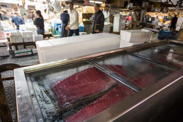 Fishmarket002 630x420