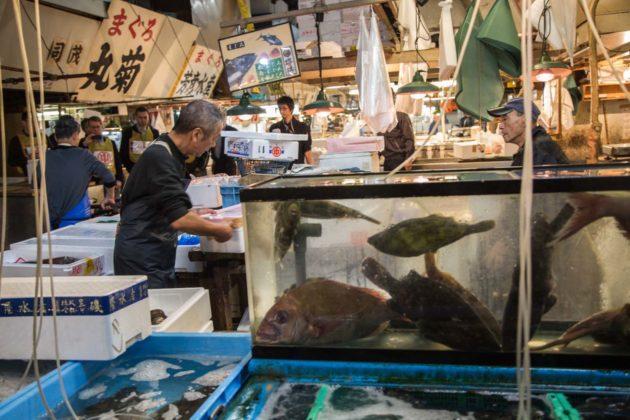 Fishmarket021 630x420