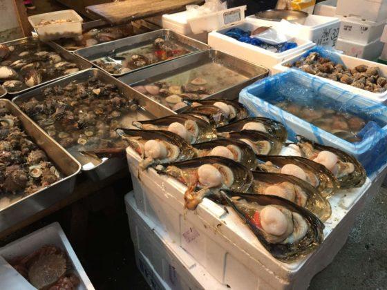Tsukiji Fish Market Tokyo 10 560x420